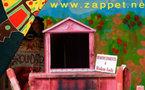 Gri Bouyé à Zappetville